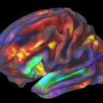 強迫性障害とワーキングメモリ(作業記憶)の関係【重要】